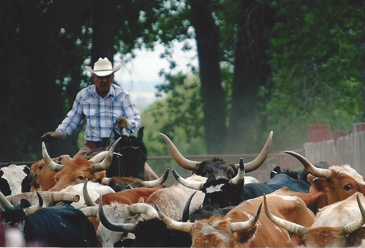 Our Ranch, Gould Ranch Cattle Company