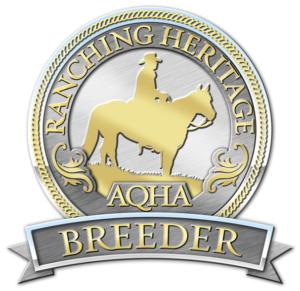 AQHA Breeder
