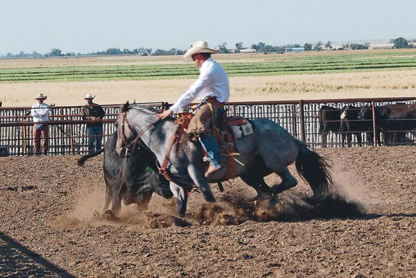Roping, Gould Ranch Cattle Company