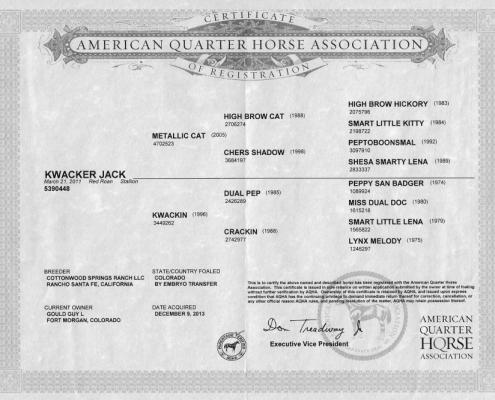 Kwacker Jack AQHA Certificate
